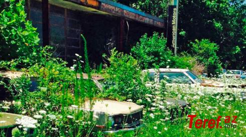 Klassik avtomobillərin olduğu sahibsiz avtosalon - MARAQLI TARİX - FOTO