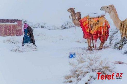 Saxara səhrasına qar yağıb - FOTO/VİDEO