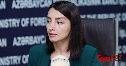 Terrorçu-diversant qrupu hərbi əsir sayıla bilməz - Leyla Abdullayeva