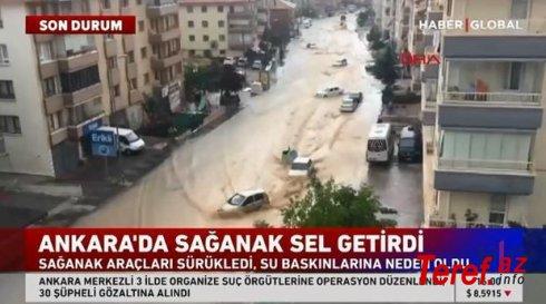 Ankarada sel: