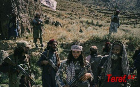 """""""Taliban"""" Əfqanıstan ərazisinin 50-70 %-ə nəzarəti ələ keçirdi"""