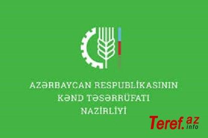 İnam Kərimov dövlətin pullarını BELƏ YANDIRIR... - İLGİNC FAKTLAR