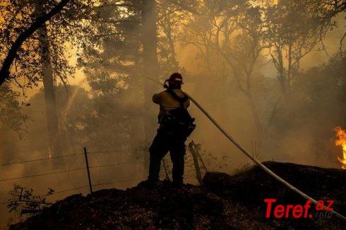 ABŞ-da meşə yanğınları 500 min hektar əraziyə yayılıb